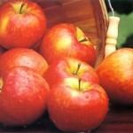 honey-crisp-apples__76739_zoom